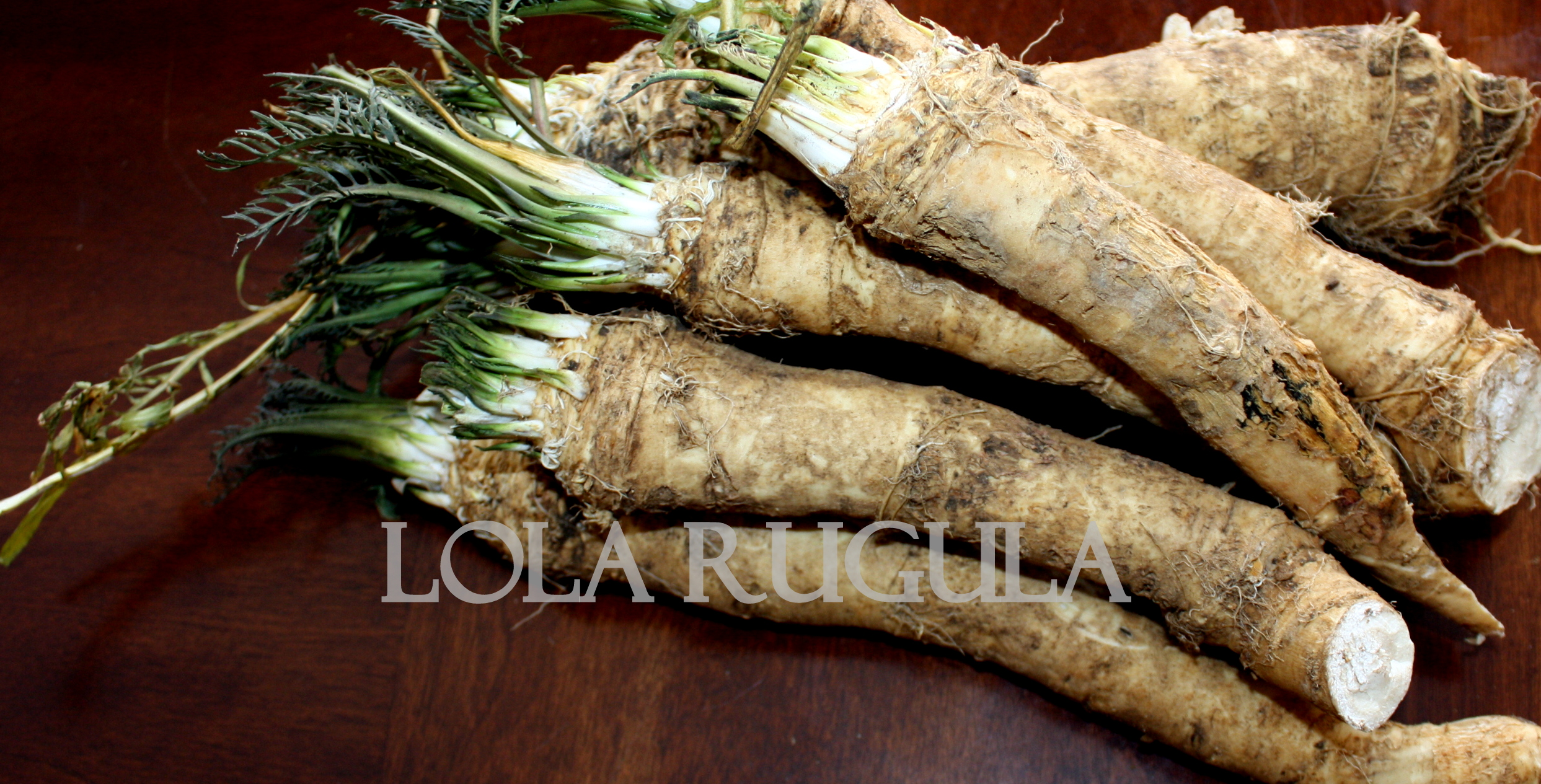 January 1 • 2486 × 1265 • how to make homemade horseradish